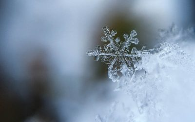 Winter Weather Preparation Week